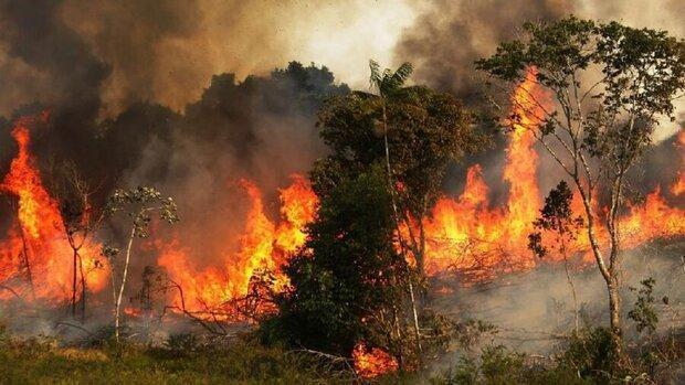کاهش 15 درصدی حوادث آتش سوزی در مناطق طبیعی و محیط زیستی خوزستان