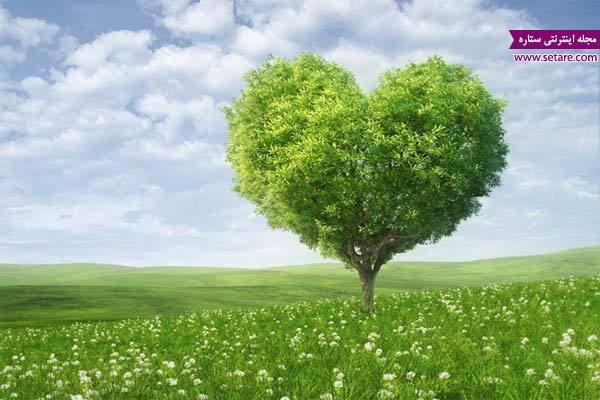 خانه تکانی دل مهمتر از خانه تکانی منزل